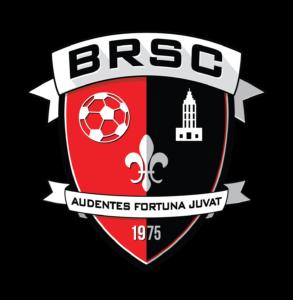BRSA Logos (2015 NEW)-01